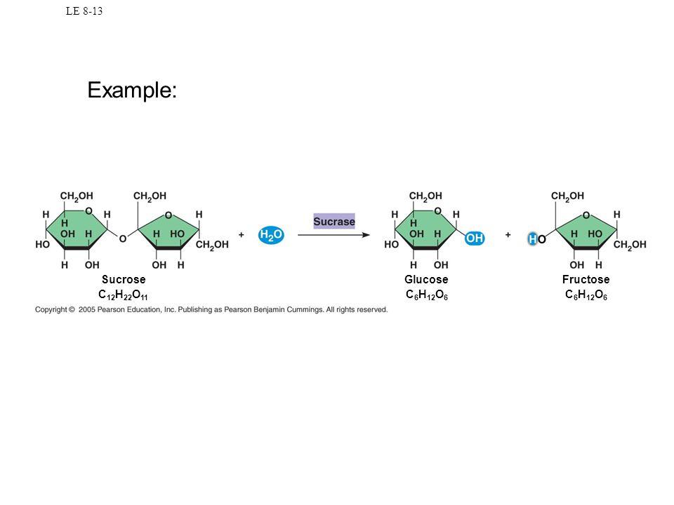LE 8-13 Sucrose C 12 H 22 O 11 Glucose C 6 H 12 O 6 Fructose C 6 H 12 O 6 Example: