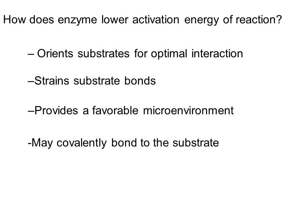 LE 8-17 Enzyme-substrate complex Substrates Enzyme Products Substrates enter active site; enzyme changes shape so its active site embraces the substrates (induced fit).
