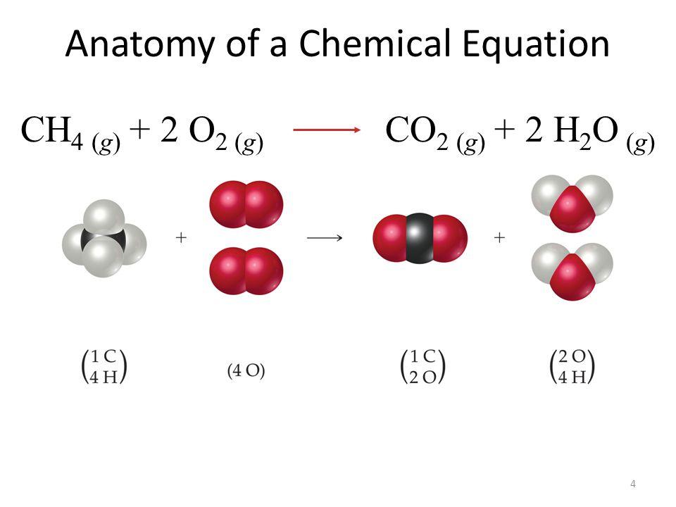 4 Anatomy of a Chemical Equation CH 4 (g) + 2 O 2 (g) CO 2 (g) + 2 H 2 O (g)