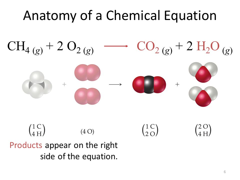 6 Anatomy of a Chemical Equation Products appear on the right side of the equation. CH 4 (g) + 2 O 2 (g) CO 2 (g) + 2 H 2 O (g)