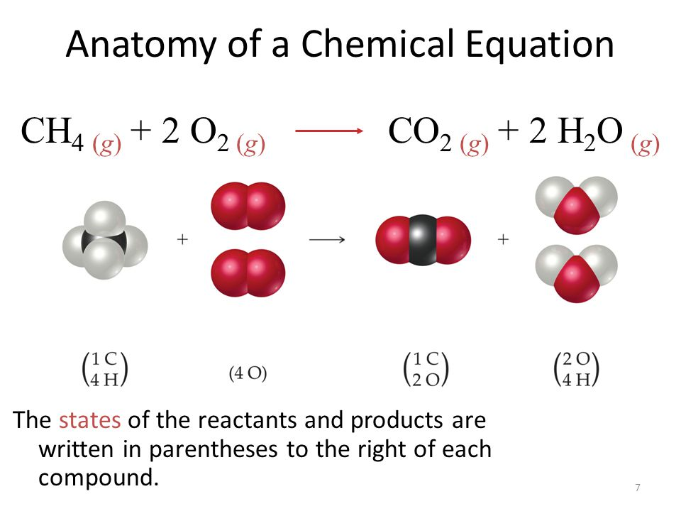 7 Anatomy of a Chemical Equation The states of the reactants and products are written in parentheses to the right of each compound. CH 4 (g) + 2 O 2 (