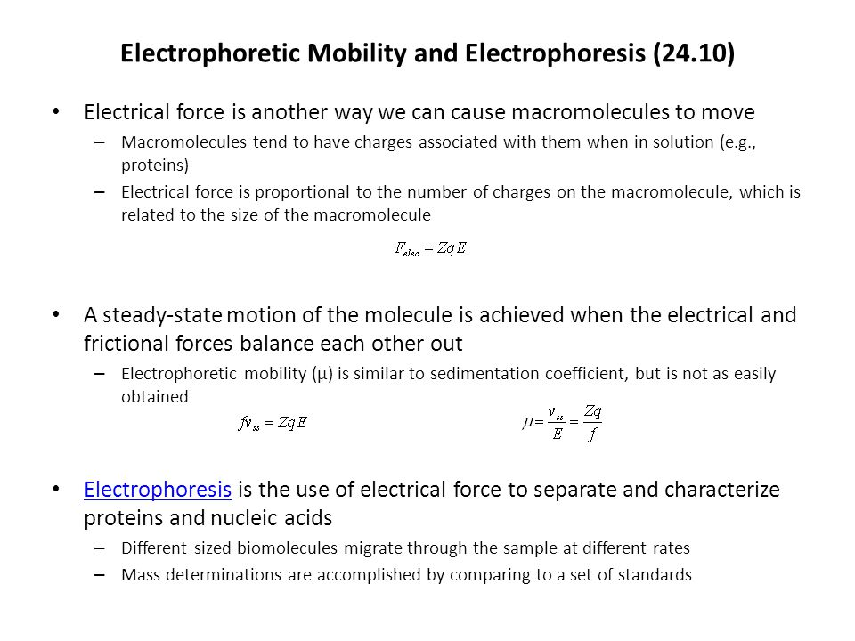 Electrophoretic Mobility and Electrophoresis (24.10) Electrical force is another way we can cause macromolecules to move – Macromolecules tend to have charges associated with them when in solution (e.g., proteins) – Electrical force is proportional to the number of charges on the macromolecule, which is related to the size of the macromolecule A steady-state motion of the molecule is achieved when the electrical and frictional forces balance each other out – Electrophoretic mobility (μ) is similar to sedimentation coefficient, but is not as easily obtained Electrophoresis is the use of electrical force to separate and characterize proteins and nucleic acids Electrophoresis – Different sized biomolecules migrate through the sample at different rates – Mass determinations are accomplished by comparing to a set of standards