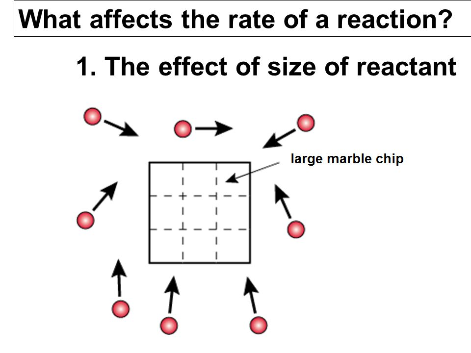 1. The effect of size of reactant What affects the rate of a reaction?