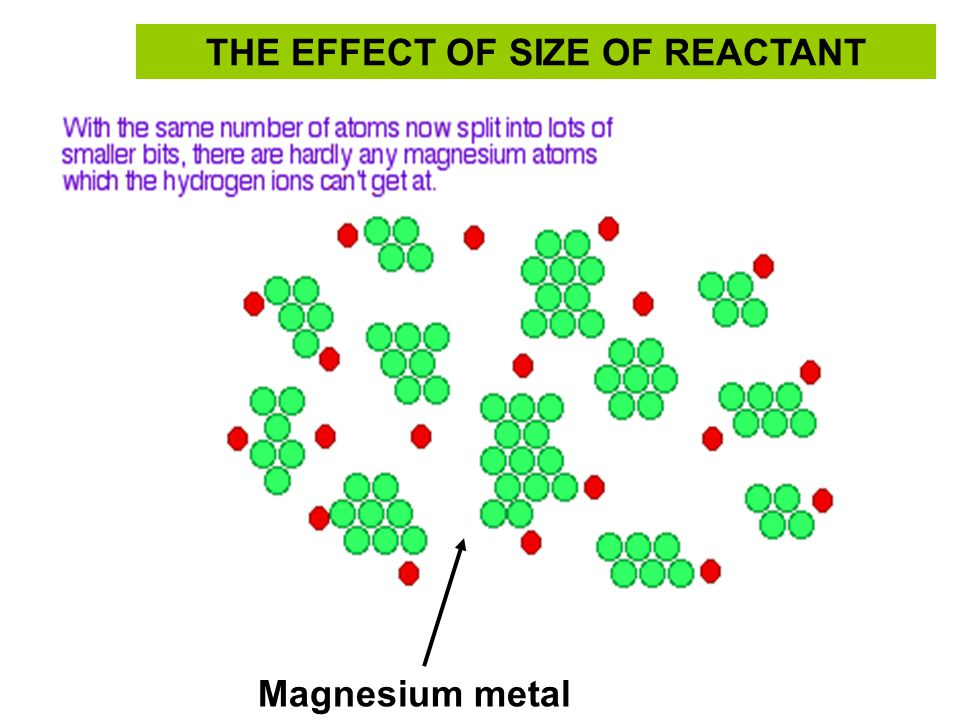 Magnesium metal THE EFFECT OF SIZE OF REACTANT