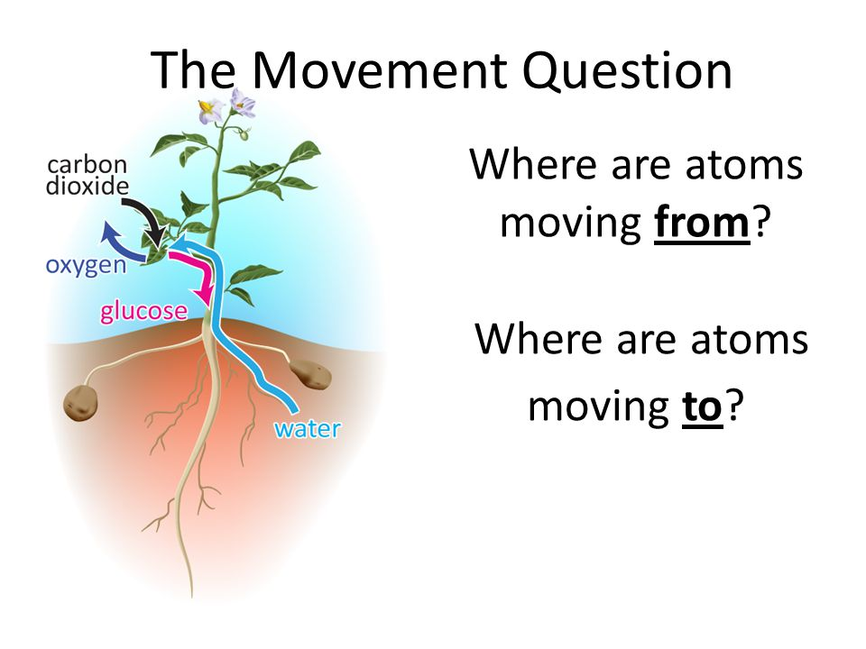 Where are atoms moving from? Where are atoms moving to? The Movement Question