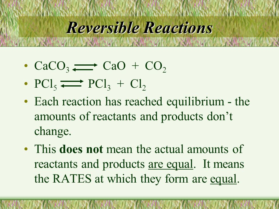 CaCO 3 CaO + CO 2 PCl 5 PCl 3 + Cl 2 Each reaction has reached equilibrium - the amounts of reactants and products don't change. This does not mean th