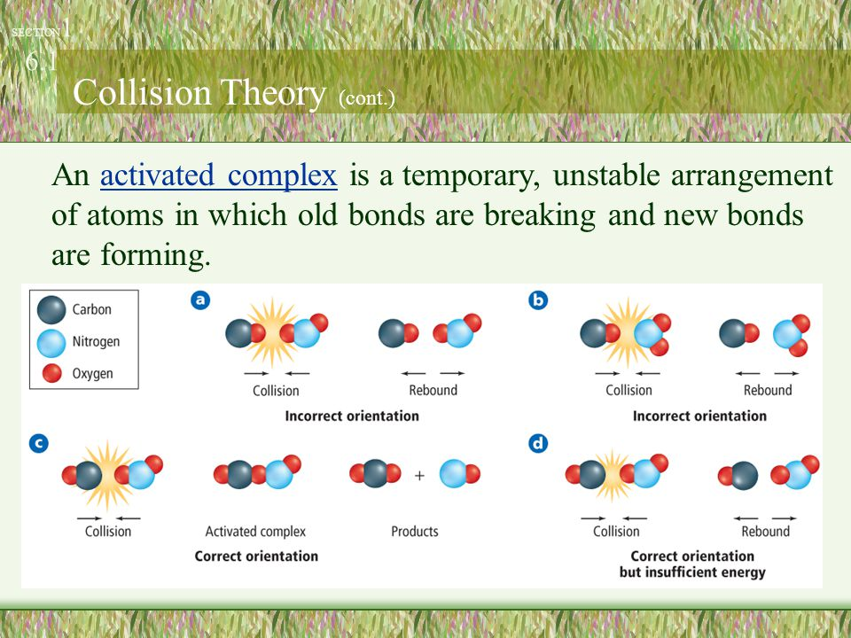 An activated complex is a temporary, unstable arrangement of atoms in which old bonds are breaking and new bonds are forming. SECTION 1 6.1 Collision