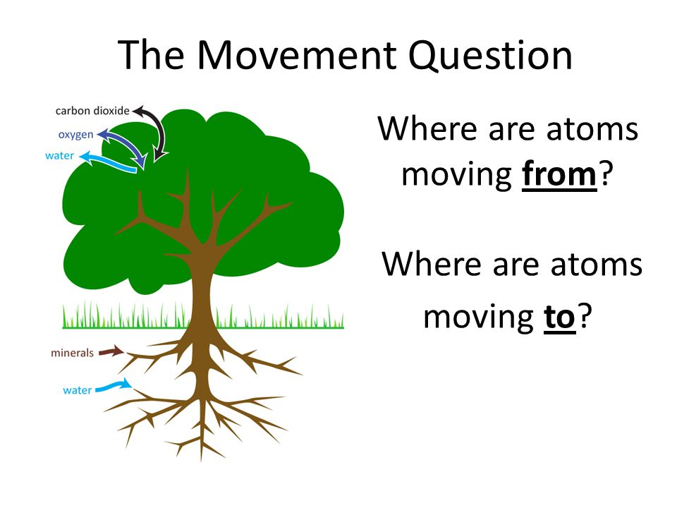 Where are atoms moving from Where are atoms moving to The Movement Question