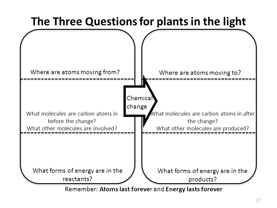 The Three Questions for plants in the light 27 Remember: Atoms last forever and Energy lasts forever What forms of energy are in the reactants.