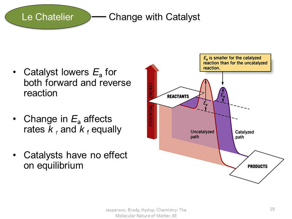 Jesperson, Brady, Hyslop. Chemistry: The Molecular Nature of Matter, 6E 19 Le Chatelier Change with Catalyst Catalyst lowers E a for both forward and