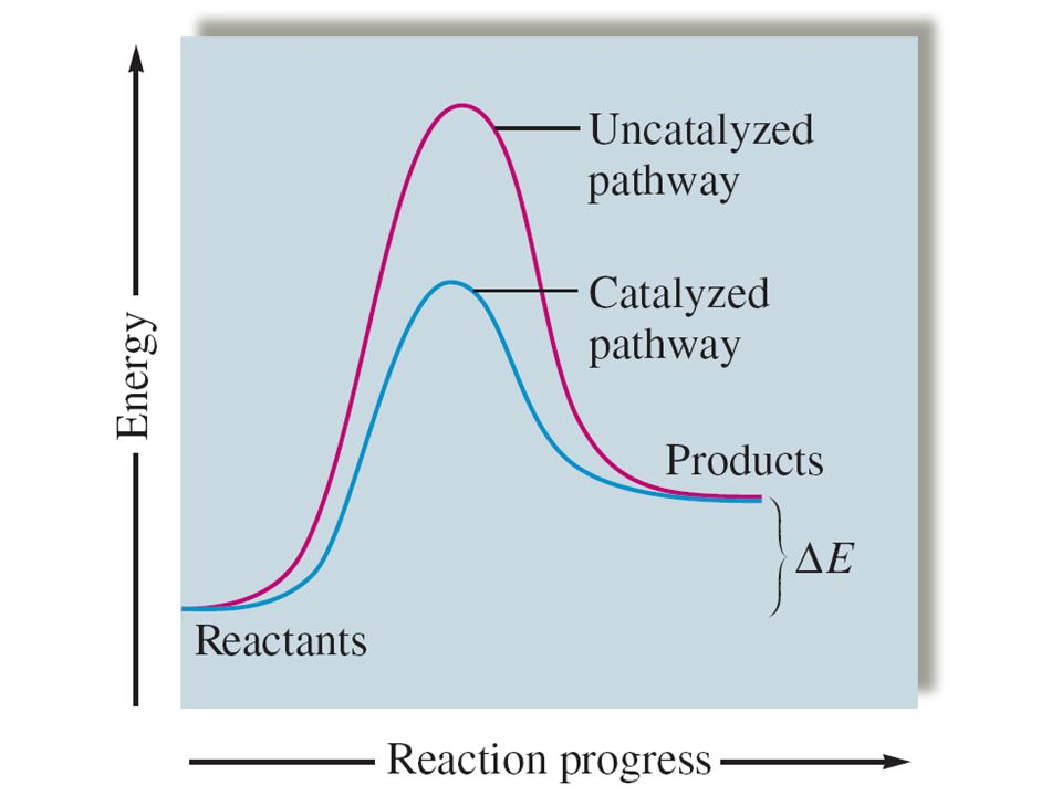 Catalysis To increase the rate of a reaction –1. Increase temperature –2. Add a catalyst Catalyst – a substance which increases the rate of a reaction
