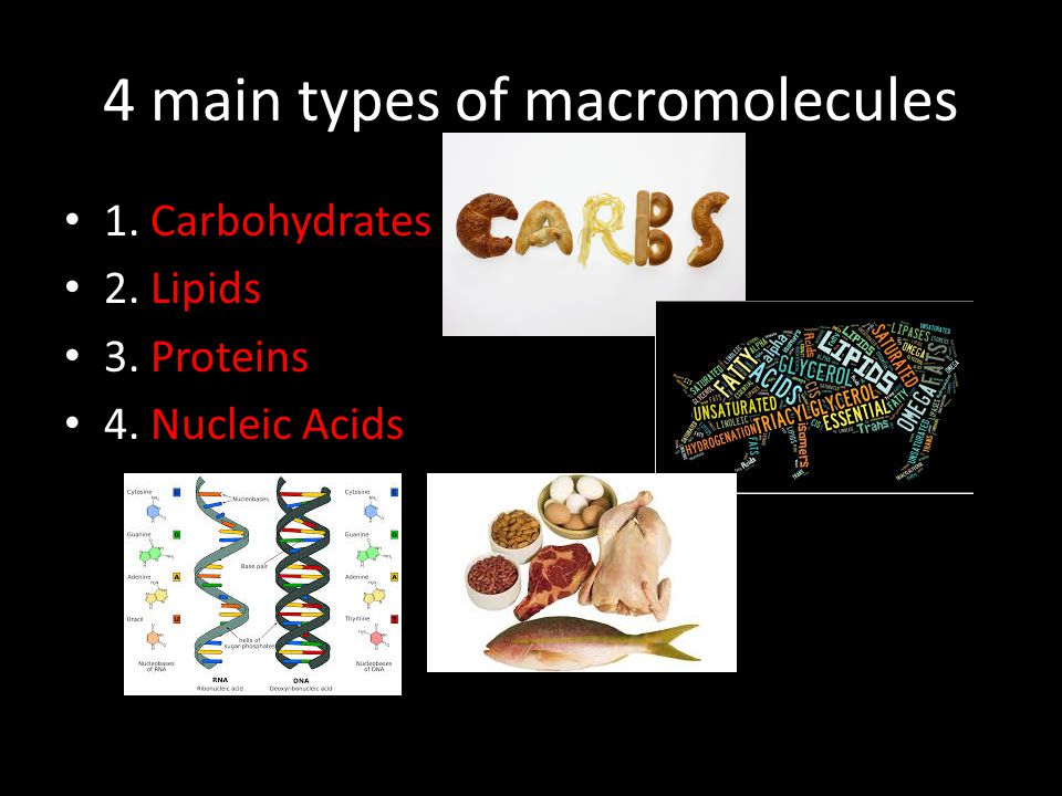 4 main types of macromolecules 1. Carbohydrates 2. Lipids 3. Proteins 4. Nucleic Acids