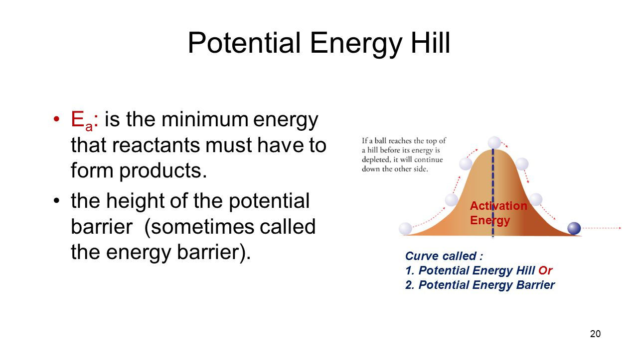 Potential Energy Hill E a : is the minimum energy that reactants must have to form products.