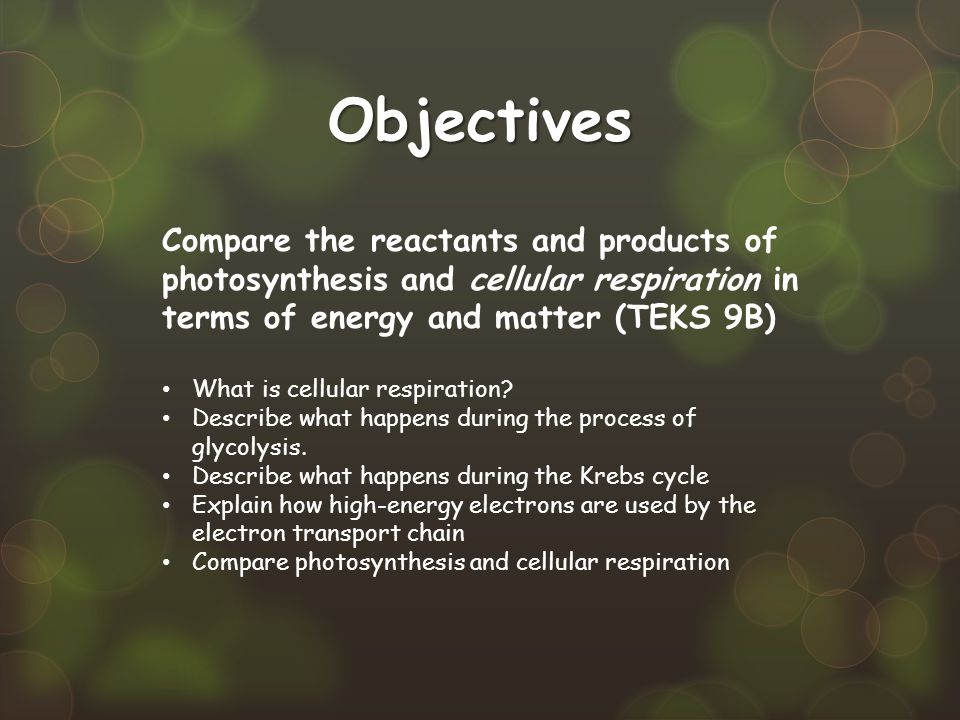 Objectives Compare the reactants and products of photosynthesis and cellular respiration in terms of energy and matter (TEKS 9B) What is cellular resp