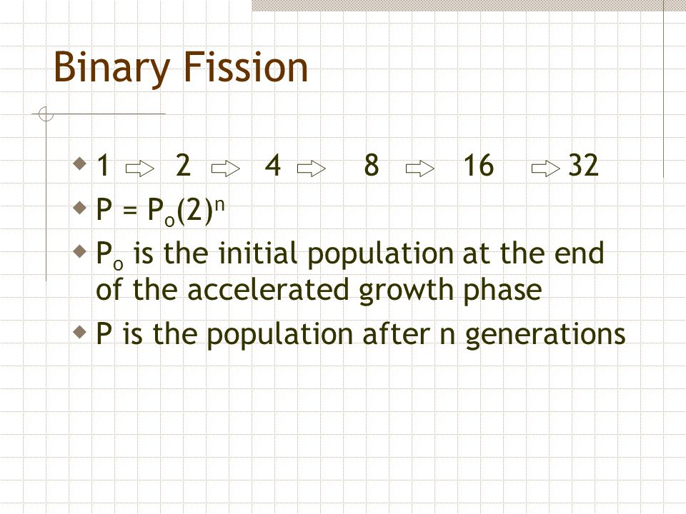 Binary Fission  1 2 4 8 16 32  P = P o (2) n  P o is the initial population at the end of the accelerated growth phase  P is the population after