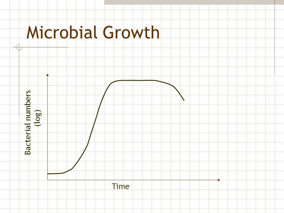 Microbial Growth Bacterial numbers (log) Time
