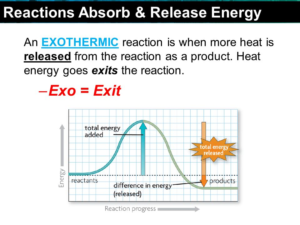 2.4 Chemical Reactions An EXOTHERMIC reaction is when more heat is released from the reaction as a product.