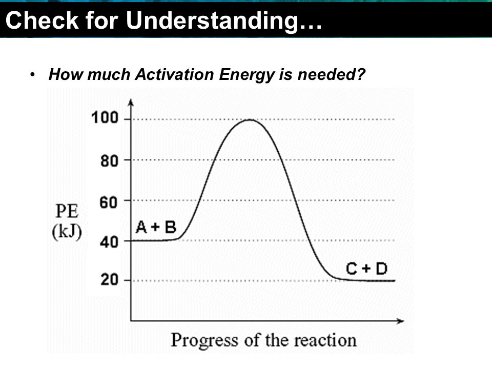 2.4 Chemical Reactions How much Activation Energy is needed Check for Understanding…
