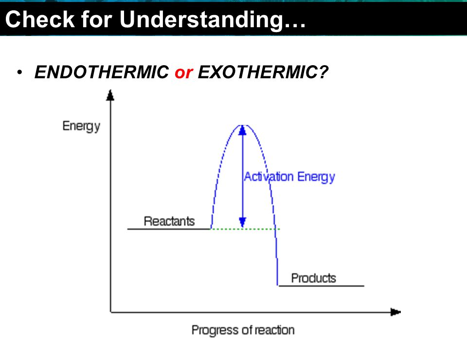 2.4 Chemical Reactions ENDOTHERMIC or EXOTHERMIC Check for Understanding…