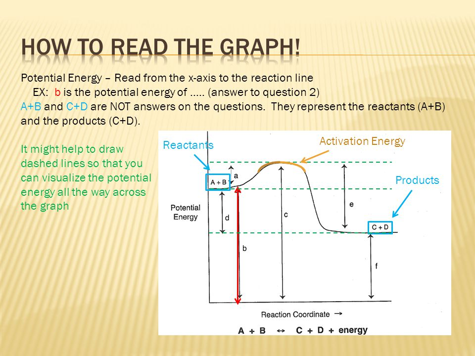 Potential Energy – Read from the x-axis to the reaction line EX: b is the potential energy of ….. (answer to question 2) A+B and C+D are NOT answers o