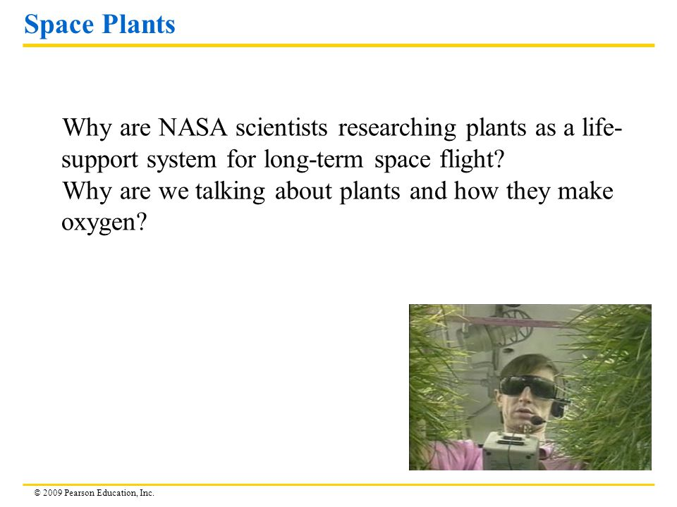 © 2009 Pearson Education, Inc. Space Plants Why are NASA scientists researching plants as a life- support system for long-term space flight? Why are w