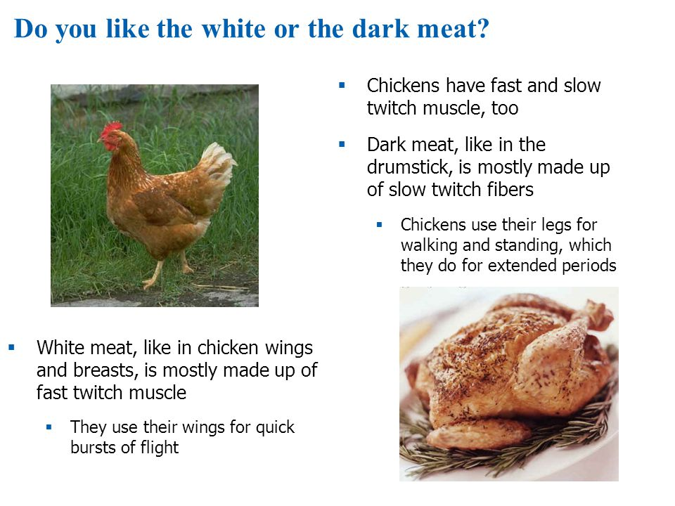 Do you like the white or the dark meat?  Chickens have fast and slow twitch muscle, too  Dark meat, like in the drumstick, is mostly made up of slow