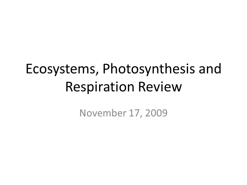 Ecosystems, Photosynthesis and Respiration Review November 17, 2009