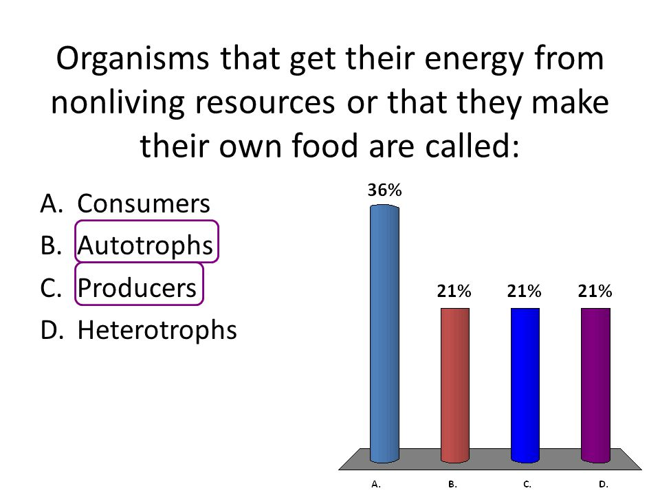 Organisms that get their energy from nonliving resources or that they make their own food are called: A.Consumers B.Autotrophs C.Producers D.Heterotrophs