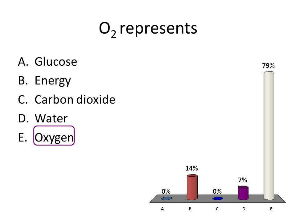 O 2 represents A.Glucose B.Energy C.Carbon dioxide D.Water E.Oxygen