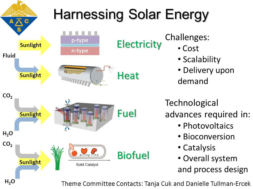 H2OH2O CO 2 Fluid Electricity Heat Fuel n-type p-type H2OH2O CO 2 Biofuel Harnessing Solar Energy Sunlight Challenges: Cost Scalability Delivery upon demand Technological advances required in: Photovoltaics Bioconversion Catalysis Overall system and process design Theme Committee Contacts: Tanja Cuk and Danielle Tullman-Ercek