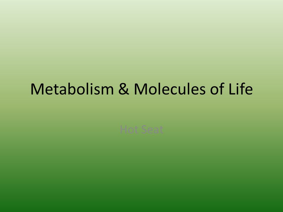 Metabolism & Molecules of Life Hot Seat