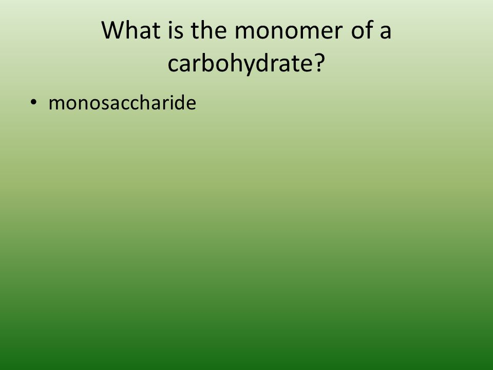 What is the monomer of a carbohydrate? monosaccharide