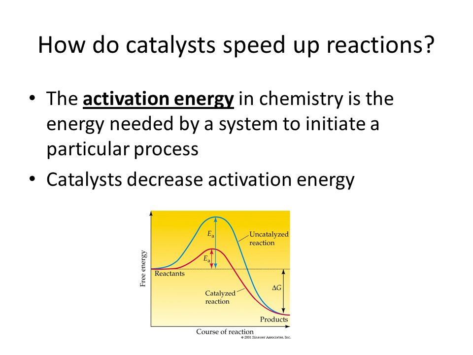 How do catalysts speed up reactions.