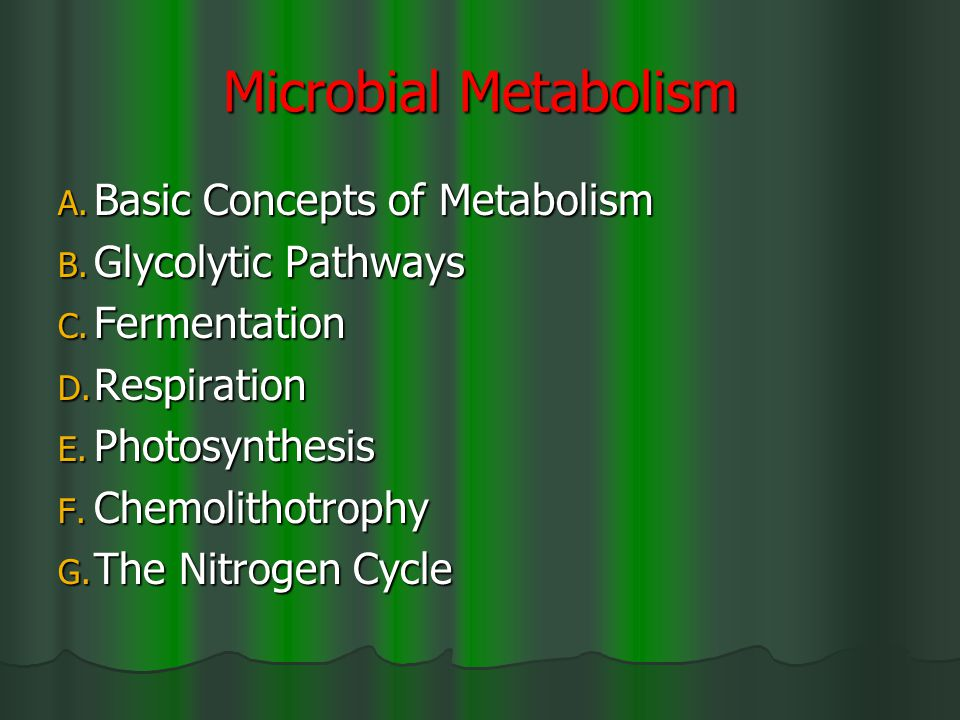 Microbial Metabolism A. Basic Concepts of Metabolism B.