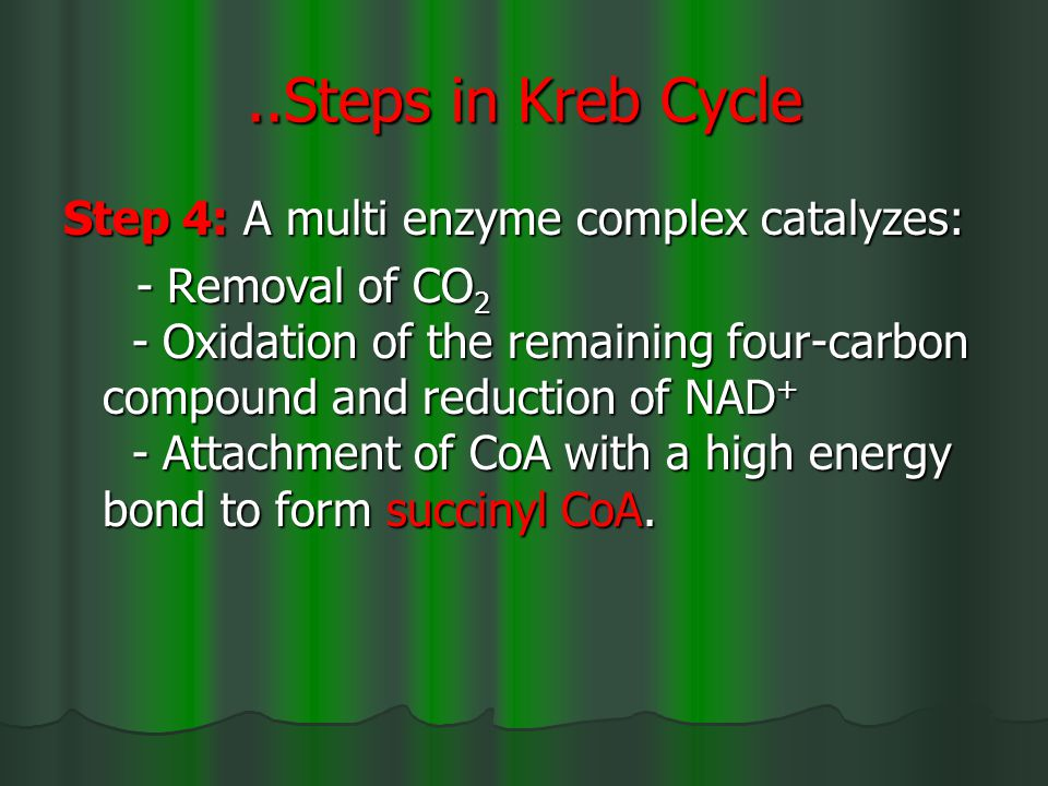..Steps in Kreb Cycle Step 4: A multi enzyme complex catalyzes: - Removal of CO 2 - Oxidation of the remaining four-carbon compound and reduction of NAD + - Attachment of CoA with a high energy bond to form succinyl CoA.