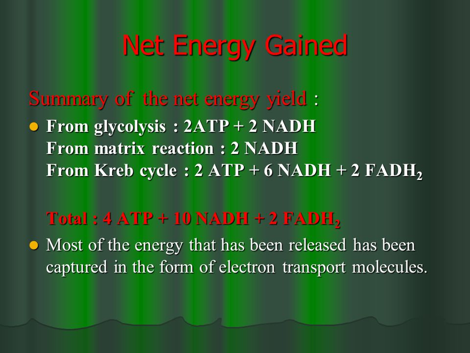 Net Energy Gained Summary of the net energy yield : From glycolysis : 2ATP + 2 NADH From matrix reaction : 2 NADH From Kreb cycle : 2 ATP + 6 NADH + 2 FADH 2 From glycolysis : 2ATP + 2 NADH From matrix reaction : 2 NADH From Kreb cycle : 2 ATP + 6 NADH + 2 FADH 2 Total : 4 ATP + 10 NADH + 2 FADH 2 Most of the energy that has been released has been captured in the form of electron transport molecules.