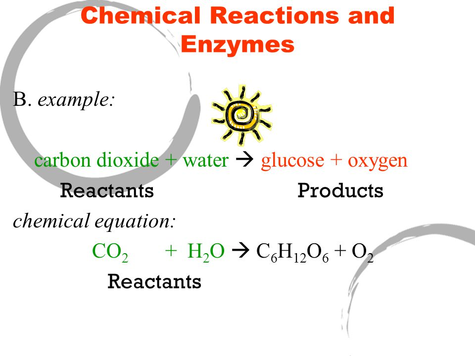 Chemical Reactions and Enzymes B.