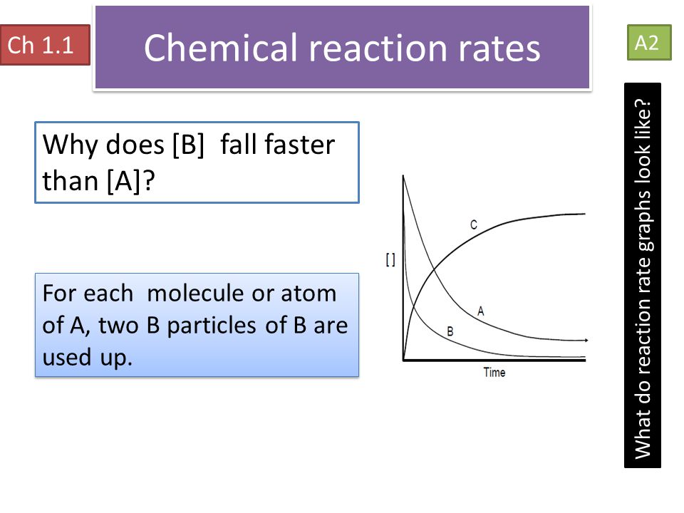 Chemical reaction rates Ch 1.1 A2 What do reaction rate graphs look like? Why does [B] fall faster than [A]? For each molecule or atom of A, two B par