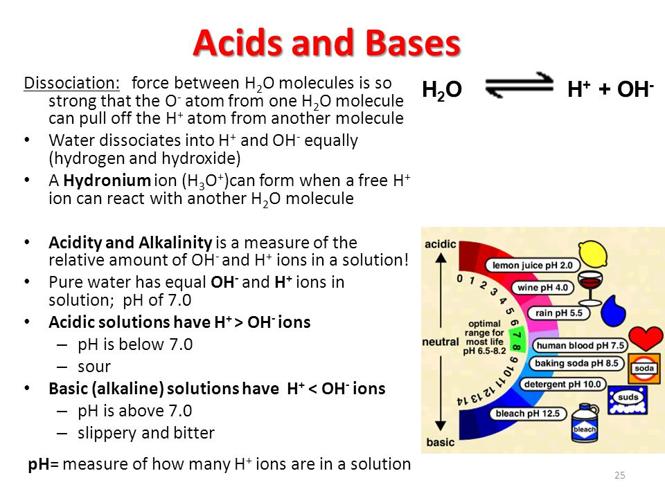Acids and Bases Dissociation: force between H 2 O molecules is so strong that the O - atom from one H 2 O molecule can pull off the H + atom from another molecule Water dissociates into H + and OH - equally (hydrogen and hydroxide) A Hydronium ion (H 3 O + )can form when a free H + ion can react with another H 2 O molecule Acidity and Alkalinity is a measure of the relative amount of OH - and H + ions in a solution.