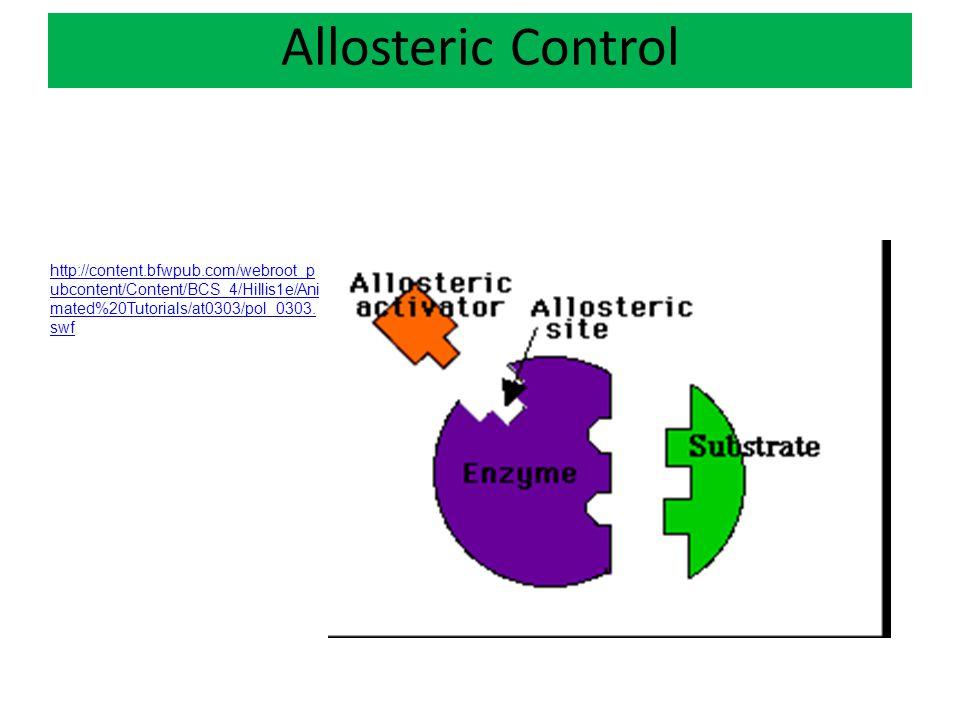 Allosteric Control http://content.bfwpub.com/webroot_p ubcontent/Content/BCS_4/Hillis1e/Ani mated%20Tutorials/at0303/pol_0303. swf