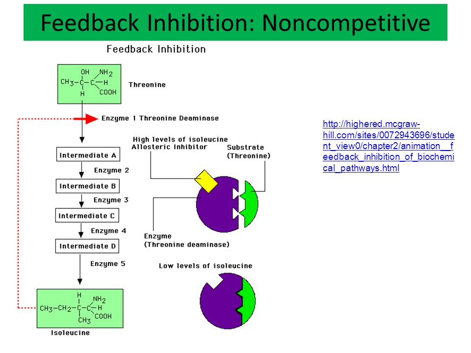 Feedback Inhibition: Noncompetitive http://highered.mcgraw- hill.com/sites/0072943696/stude nt_view0/chapter2/animation__f eedback_inhibition_of_biochemi cal_pathways.html