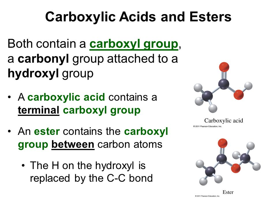 Carboxylic Acids and Esters Both contain a carboxyl group, a carbonyl group attached to a hydroxyl group A carboxylic acid contains a terminal carboxy
