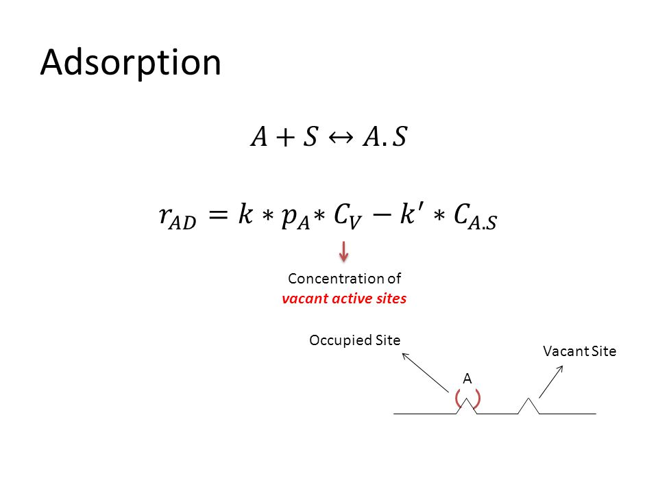 Adsorption Concentration of vacant active sites A Occupied Site Vacant Site