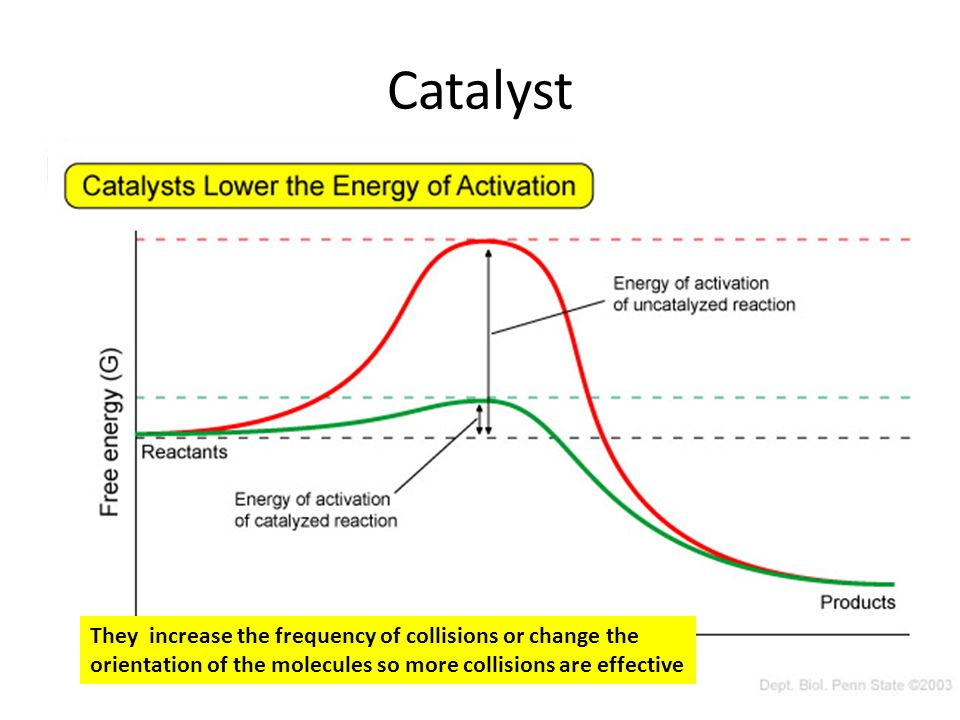 Catalyst They increase the frequency of collisions or change the orientation of the molecules so more collisions are effective