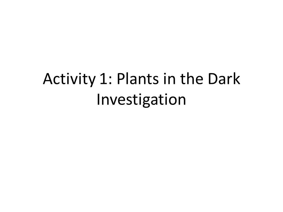 Activity 1: Plants in the Dark Investigation