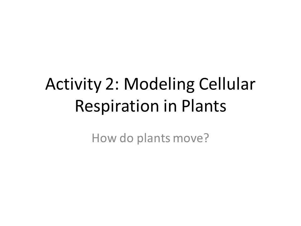 Activity 2: Modeling Cellular Respiration in Plants How do plants move?