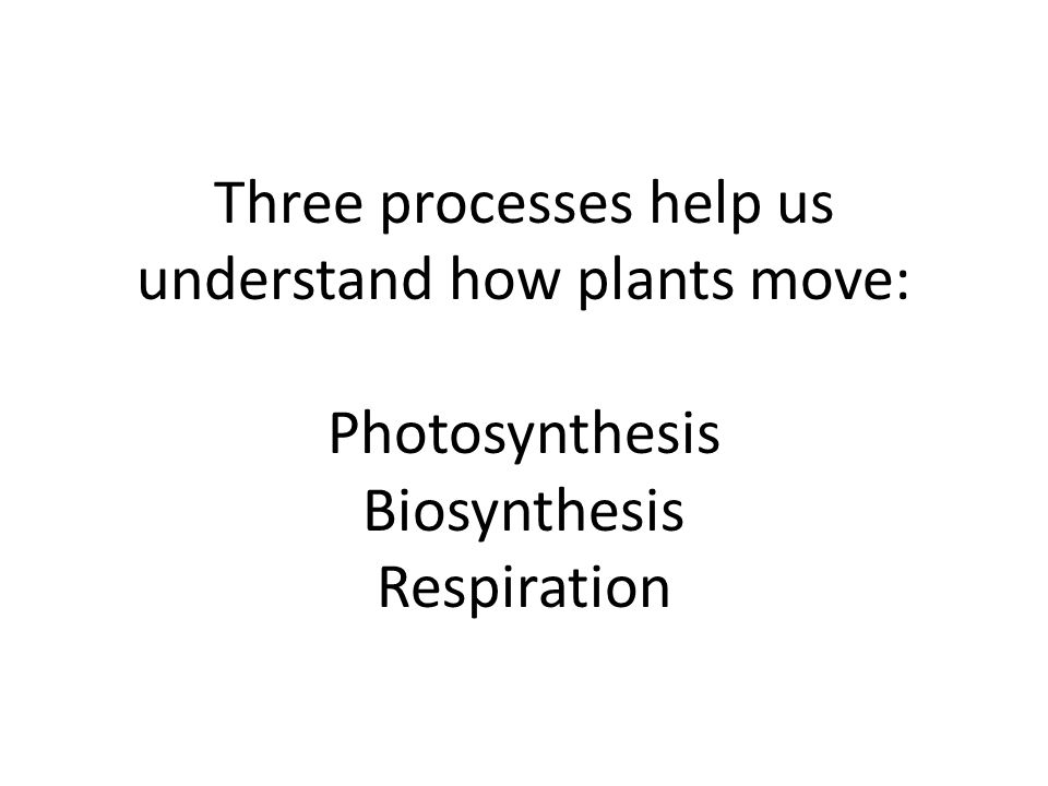 Three processes help us understand how plants move: Photosynthesis Biosynthesis Respiration