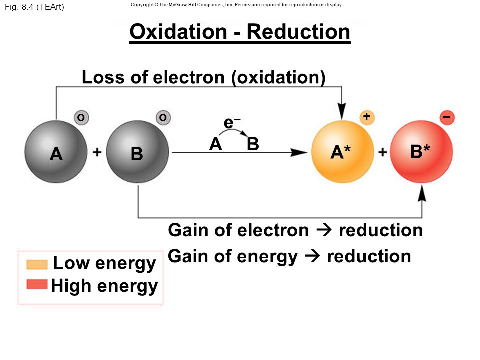 Fig. 8.4 (TEArt) Gain of electron  reduction Low energy e–e– AB High energy Loss of electron (oxidation) A oo B + – A* B* Copyright © The McGraw-Hill