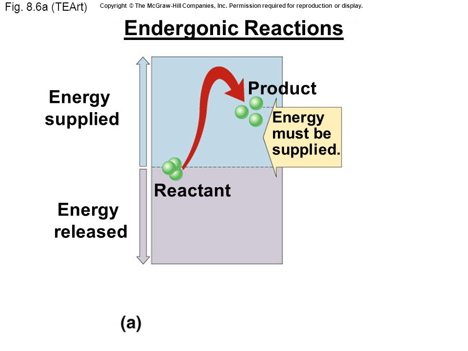 Fig. 8.6a (TEArt) Reactant Product Endergonic Reactions Energy must be supplied.