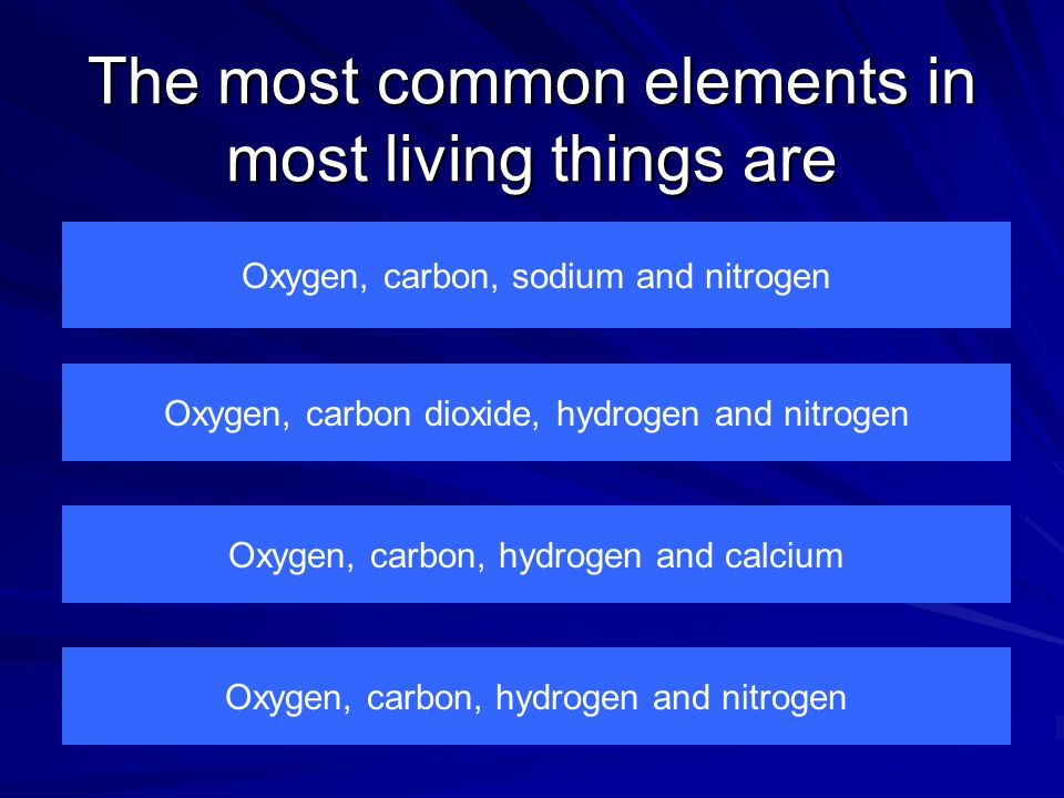 The smallest possible particle of an element is A molecule An atom A compound A reactant